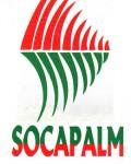 SOCAPALM_0001-120x1501